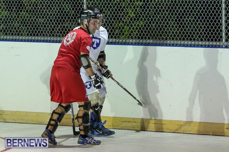 Colorado-Rockies-vs-Toronto-Arenas-Bermuda-Ball-Hockey-January-21-2015-36