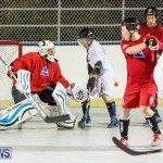 Colorado Rockies vs Toronto Arenas Bermuda Ball Hockey, January 21 2015-39