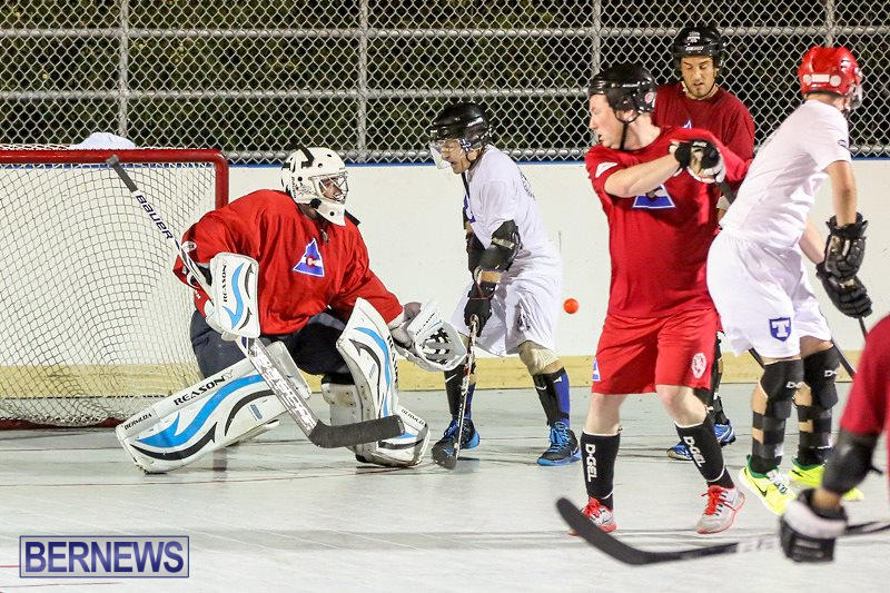 Colorado-Rockies-vs-Toronto-Arenas-Bermuda-Ball-Hockey-January-21-2015-39