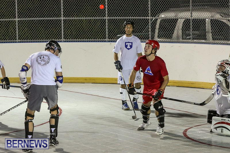 Colorado-Rockies-vs-Toronto-Arenas-Bermuda-Ball-Hockey-January-21-2015-4