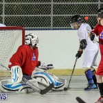 Colorado Rockies vs Toronto Arenas Bermuda Ball Hockey, January 21 2015-40