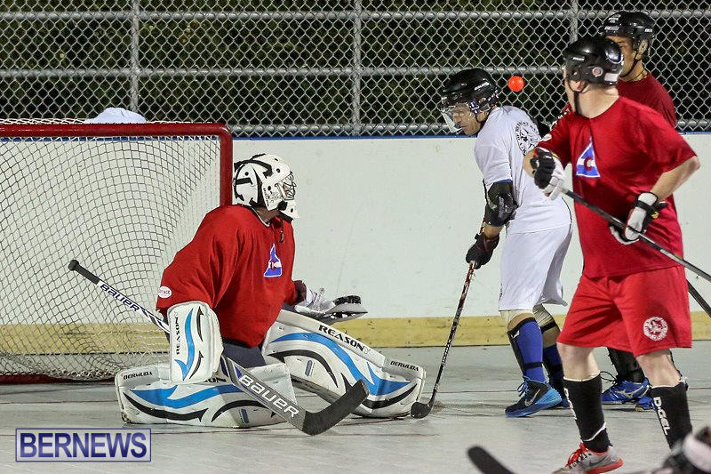 Colorado-Rockies-vs-Toronto-Arenas-Bermuda-Ball-Hockey-January-21-2015-40