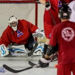 Colorado Rockies vs Toronto Arenas Bermuda Ball Hockey, January 21 2015-41