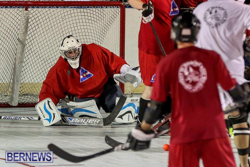 Colorado-Rockies-vs-Toronto-Arenas-Bermuda-Ball-Hockey-January-21-2015-41
