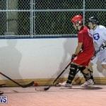 Colorado Rockies vs Toronto Arenas Bermuda Ball Hockey, January 21 2015-44