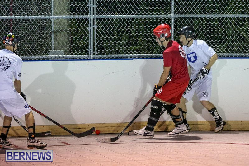 Colorado-Rockies-vs-Toronto-Arenas-Bermuda-Ball-Hockey-January-21-2015-44