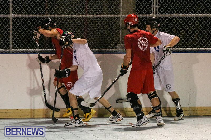 Colorado-Rockies-vs-Toronto-Arenas-Bermuda-Ball-Hockey-January-21-2015-46