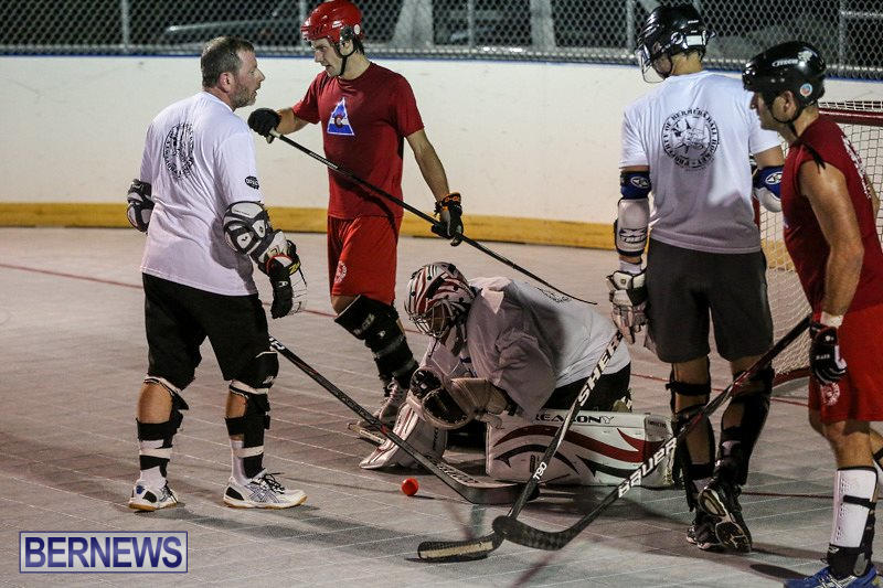 Colorado-Rockies-vs-Toronto-Arenas-Bermuda-Ball-Hockey-January-21-2015-48