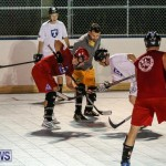 Colorado Rockies vs Toronto Arenas Bermuda Ball Hockey, January 21 2015-49
