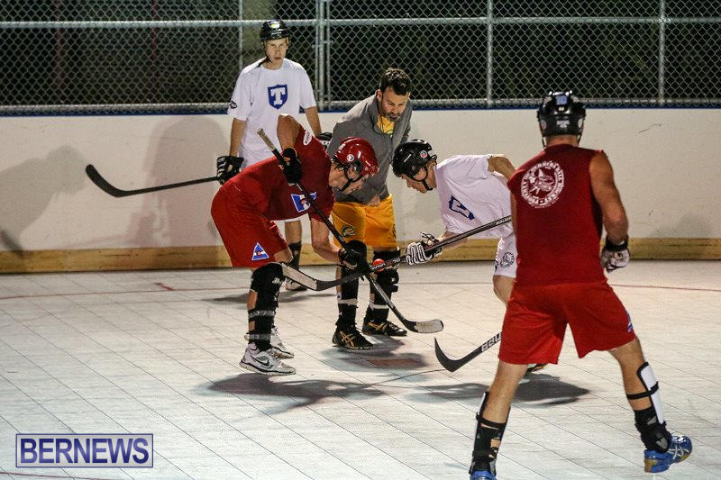 Colorado-Rockies-vs-Toronto-Arenas-Bermuda-Ball-Hockey-January-21-2015-49