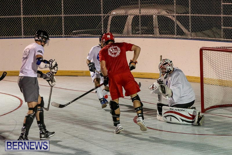 Colorado-Rockies-vs-Toronto-Arenas-Bermuda-Ball-Hockey-January-21-2015-5