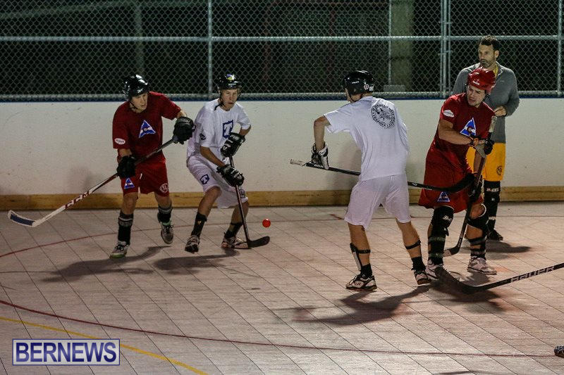 Colorado-Rockies-vs-Toronto-Arenas-Bermuda-Ball-Hockey-January-21-2015-51