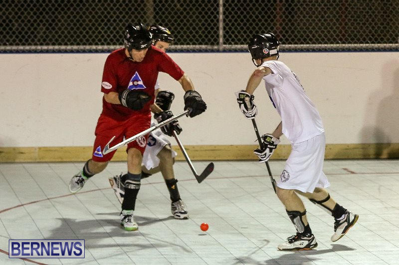 Colorado-Rockies-vs-Toronto-Arenas-Bermuda-Ball-Hockey-January-21-2015-52