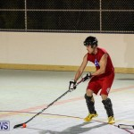 Colorado Rockies vs Toronto Arenas Bermuda Ball Hockey, January 21 2015-53