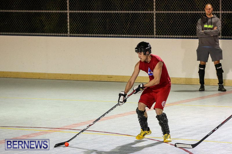 Colorado-Rockies-vs-Toronto-Arenas-Bermuda-Ball-Hockey-January-21-2015-53