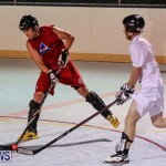Colorado Rockies vs Toronto Arenas Bermuda Ball Hockey, January 21 2015-54
