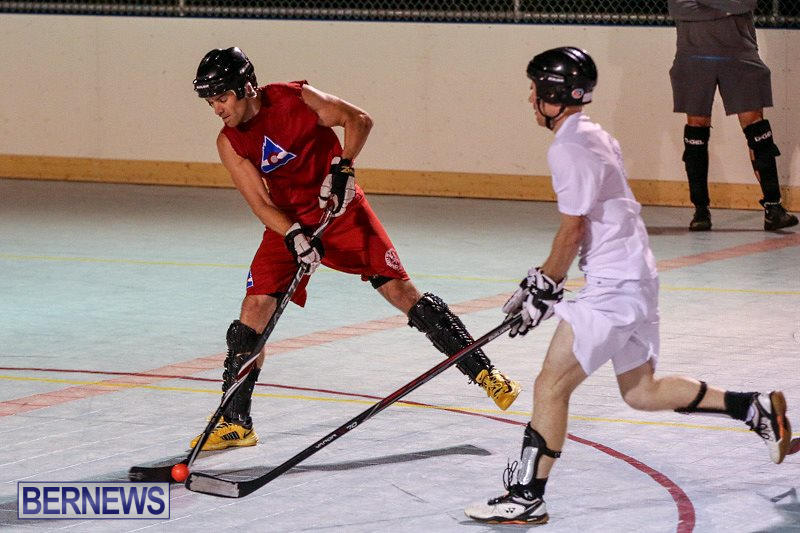Colorado-Rockies-vs-Toronto-Arenas-Bermuda-Ball-Hockey-January-21-2015-54