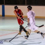 Colorado Rockies vs Toronto Arenas Bermuda Ball Hockey, January 21 2015-55