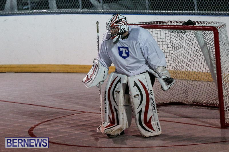 Colorado-Rockies-vs-Toronto-Arenas-Bermuda-Ball-Hockey-January-21-2015-56