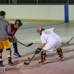Colorado Rockies vs Toronto Arenas Bermuda Ball Hockey, January 21 2015-58