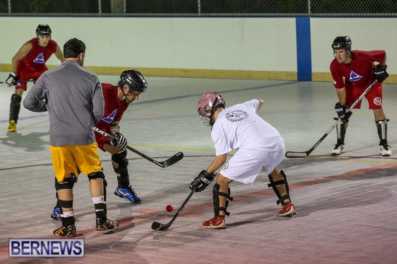 Colorado-Rockies-vs-Toronto-Arenas-Bermuda-Ball-Hockey-January-21-2015-58