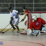 Colorado Rockies vs Toronto Arenas Bermuda Ball Hockey, January 21 2015-6