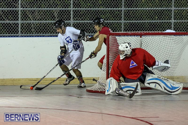 Colorado-Rockies-vs-Toronto-Arenas-Bermuda-Ball-Hockey-January-21-2015-6