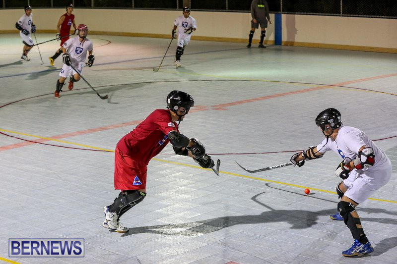 Colorado-Rockies-vs-Toronto-Arenas-Bermuda-Ball-Hockey-January-21-2015-60