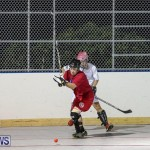 Colorado Rockies vs Toronto Arenas Bermuda Ball Hockey, January 21 2015-62
