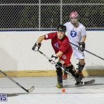 Colorado Rockies vs Toronto Arenas Bermuda Ball Hockey, January 21 2015-63