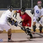 Colorado Rockies vs Toronto Arenas Bermuda Ball Hockey, January 21 2015-64