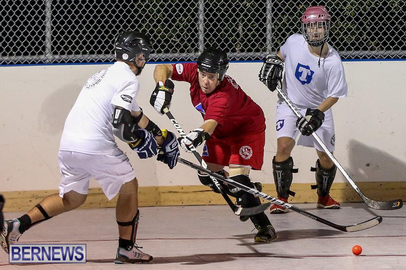 Colorado-Rockies-vs-Toronto-Arenas-Bermuda-Ball-Hockey-January-21-2015-64