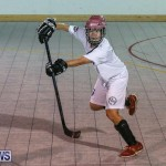 Colorado Rockies vs Toronto Arenas Bermuda Ball Hockey, January 21 2015-66