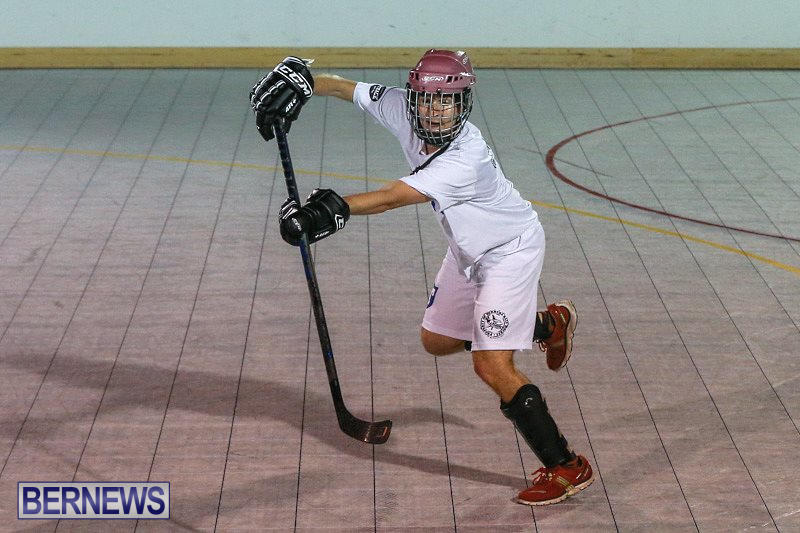 Colorado-Rockies-vs-Toronto-Arenas-Bermuda-Ball-Hockey-January-21-2015-66