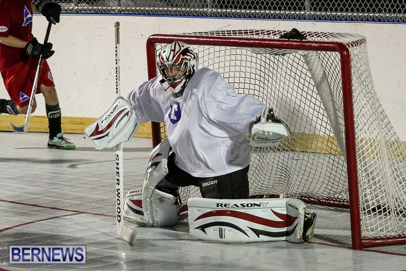Colorado-Rockies-vs-Toronto-Arenas-Bermuda-Ball-Hockey-January-21-2015-69