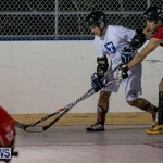 Colorado Rockies vs Toronto Arenas Bermuda Ball Hockey, January 21 2015-7