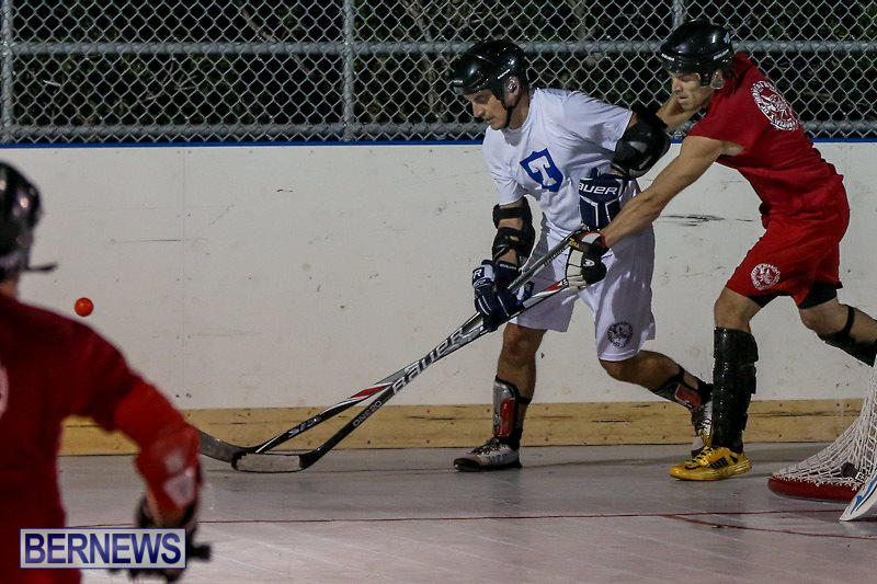 Colorado-Rockies-vs-Toronto-Arenas-Bermuda-Ball-Hockey-January-21-2015-7