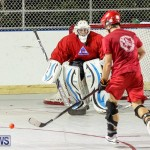 Colorado Rockies vs Toronto Arenas Bermuda Ball Hockey, January 21 2015-70