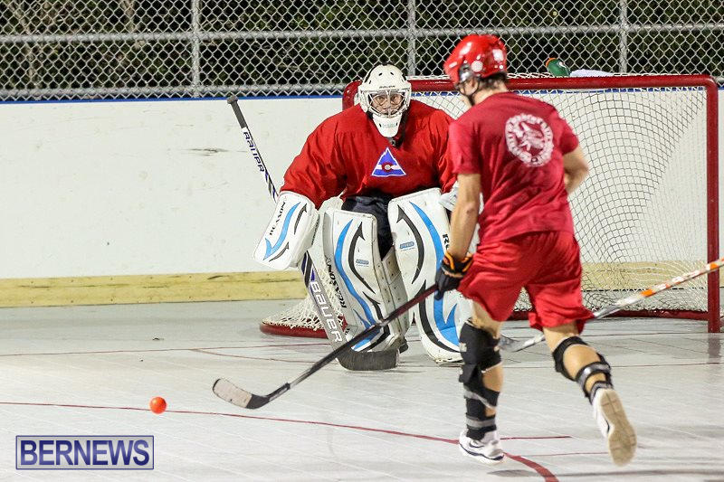 Colorado-Rockies-vs-Toronto-Arenas-Bermuda-Ball-Hockey-January-21-2015-70