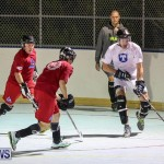 Colorado Rockies vs Toronto Arenas Bermuda Ball Hockey, January 21 2015-71