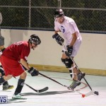 Colorado Rockies vs Toronto Arenas Bermuda Ball Hockey, January 21 2015-72
