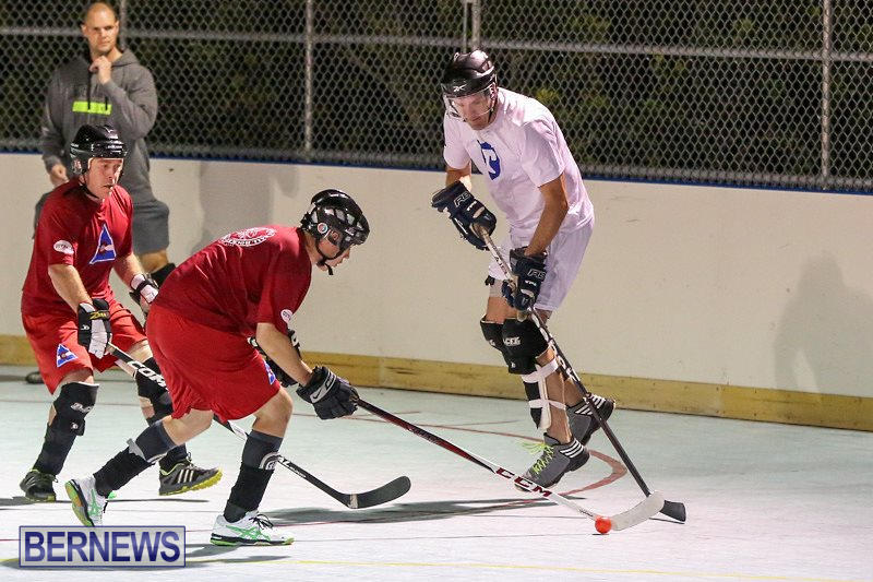 Colorado-Rockies-vs-Toronto-Arenas-Bermuda-Ball-Hockey-January-21-2015-72
