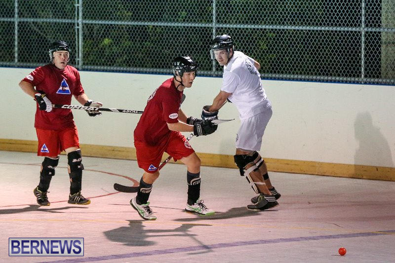 Colorado-Rockies-vs-Toronto-Arenas-Bermuda-Ball-Hockey-January-21-2015-73