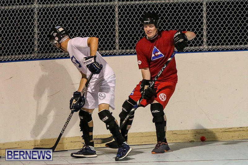 Colorado-Rockies-vs-Toronto-Arenas-Bermuda-Ball-Hockey-January-21-2015-74