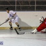 Colorado Rockies vs Toronto Arenas Bermuda Ball Hockey, January 21 2015-75