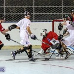 Colorado Rockies vs Toronto Arenas Bermuda Ball Hockey, January 21 2015-76