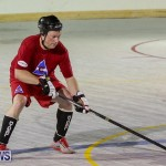 Colorado Rockies vs Toronto Arenas Bermuda Ball Hockey, January 21 2015-77