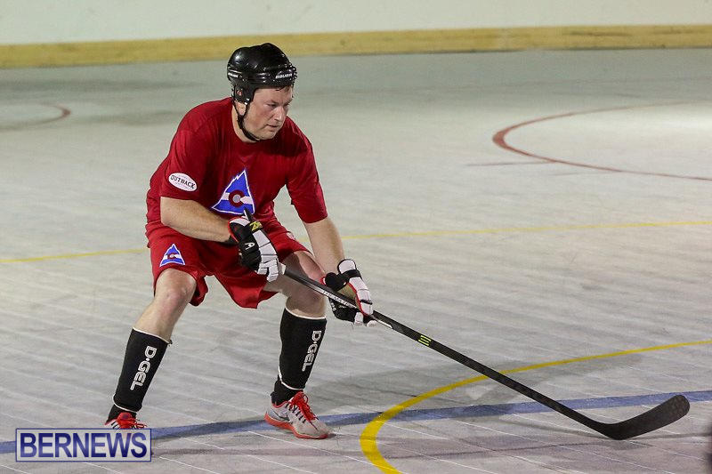 Colorado-Rockies-vs-Toronto-Arenas-Bermuda-Ball-Hockey-January-21-2015-77