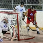 Colorado Rockies vs Toronto Arenas Bermuda Ball Hockey, January 21 2015-8