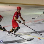 Colorado Rockies vs Toronto Arenas Bermuda Ball Hockey, January 21 2015-80